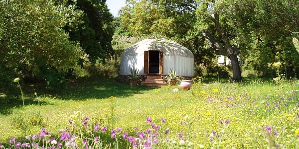 Try out a Yurt for your next Vacation